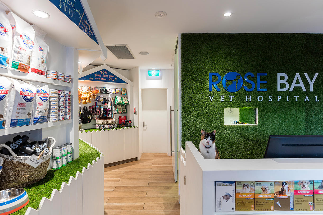 Vet Point Piper